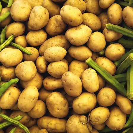 Picture for category Potato
