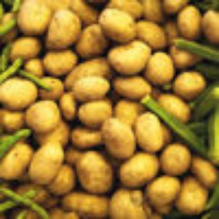 صورة لقسم البطاطس